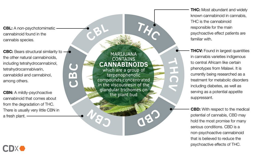 Cannabinoid Research Companies